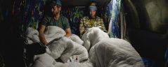 campervan-hire-8.jpg